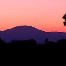 Sunset over Sukhothai by Alexander Gitlits