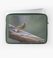 Gentle backlight. European greenfinch Laptop Sleeve