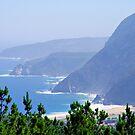 coastline by Daidalos