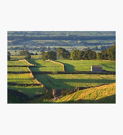 Morning Light near Askrigg - Yorkshire Dales Photographic Print
