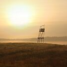 Old guard tower  in sunrise by Antanas