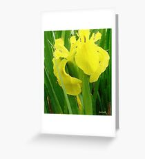 April showers....... Greeting Card