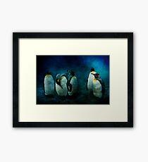 Cold Penguins Framed Print
