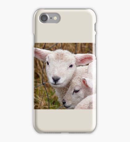 Spring Lambs iPhone Case/Skin