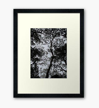 A Walk in the Clouds #4 Framed Print