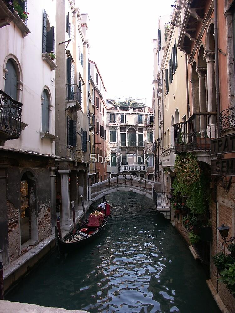 Venice by Sherri Fink