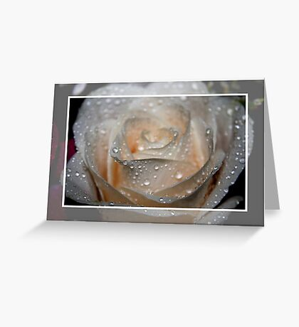 Raindrops and the Rose Greeting Card