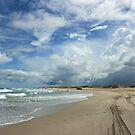Lucky Bay, Western Australia by Miriam Shilling