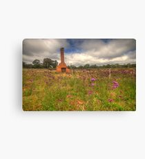 Wildflowers - Hill End, NSW Australia - The HDR Experience Canvas Print