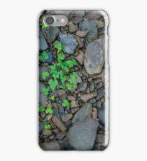 River Ivy iPhone Case/Skin