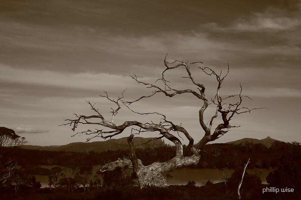 Lake Windermere spirit #1 by phillip wise