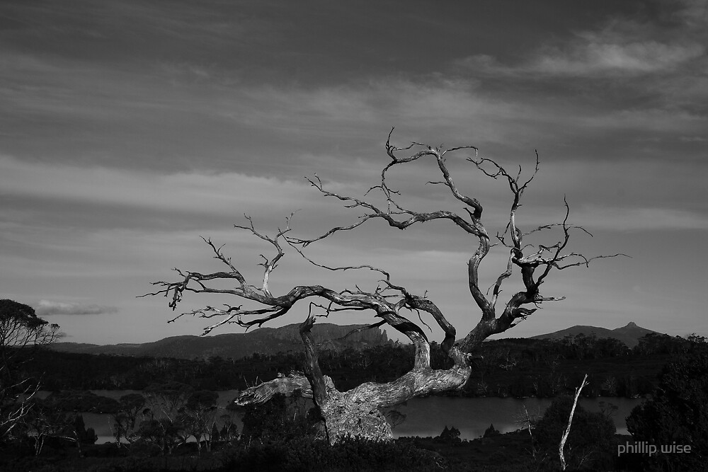Lake Windermere spirit #2 by phillip wise