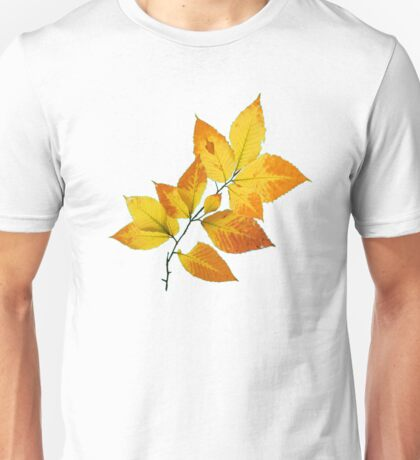 Maine Autumn Leaves T-Shirt