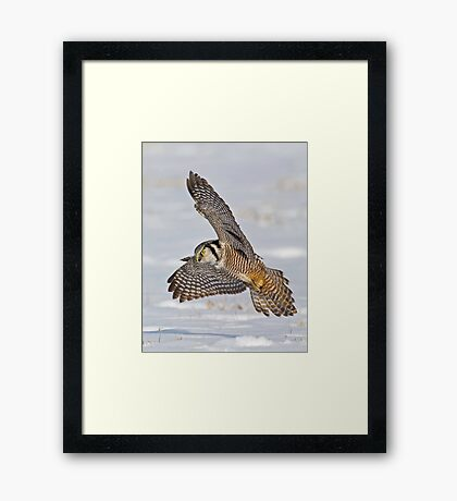 Swoop, there it is!  Framed Print