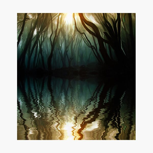 Nature Reflection Photographic Print