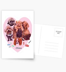 BREED OF DOGS Postcards