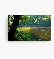 At the spring pond Canvas Print