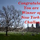 NYC banner challenge by contradirony