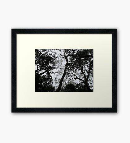 A Walk in the Clouds #6 Framed Print