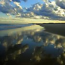 Upon Reflection by Of Land & Ocean - Samantha Goode