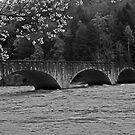 Water under the Bridge by Sandra Guzman