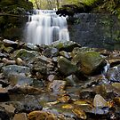 Strickland Ave Falls by Patrick Reid