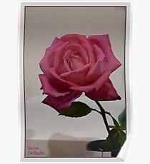 Rose Delight Poster