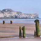 Old Groynes at Sandsend Beach by Sandra Cockayne