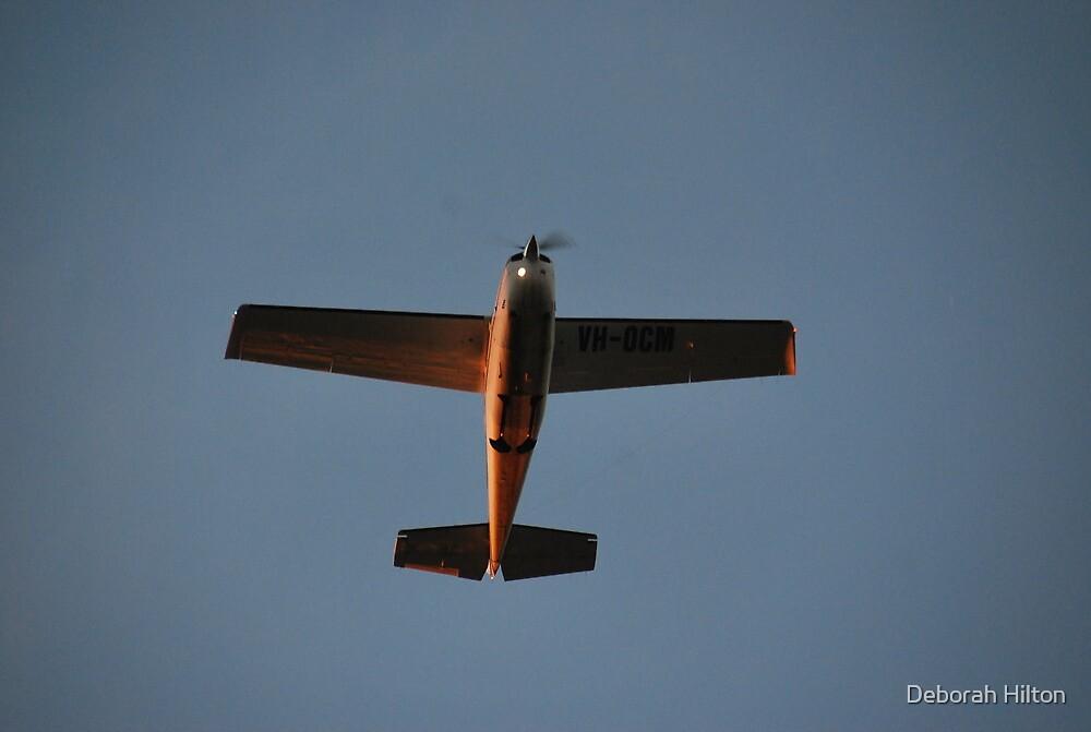 Fly Over by Deborah Hilton