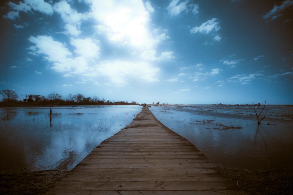 Walking to uknown by Marzena Grabczynska Lorenc