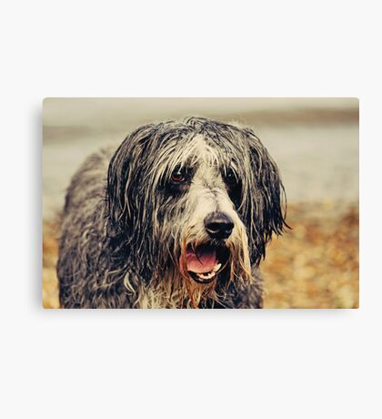 """The """"wet look"""" Canvas Print"""
