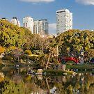 Jardin Japones, Buenos Aires (Bis) by Mathieu Longvert