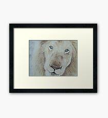 Casper the White Lion Framed Print