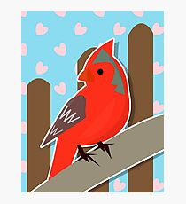 Red Cardinal Illustration Photographic Print
