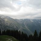 The Benches - Allmendhubel, CH by Danielle Ducrest