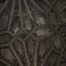 Ceiling with Cross Hatching and Painted Flowers - Bern, CH by Danielle Ducrest