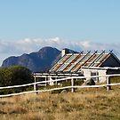 Craig's Hut by Fiona Kersey