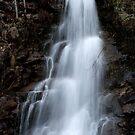 Road side falls in Harrison Hot Springs by Valerie Henry