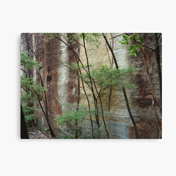 Girl in the rock - Wollemi National Park Canvas Print