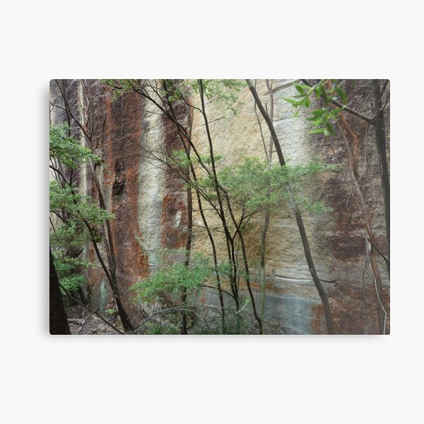 Girl in the rock - Wollemi National Park Metal Print
