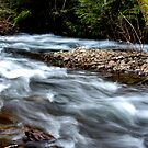 Mystic River-Harrison Hot Springs BC by Valerie Henry