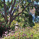 Wita Wirra Park by MyPerspective