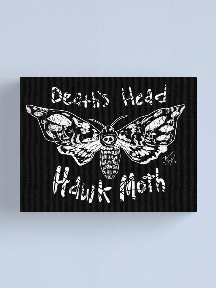 Alternate view of Death's Head Hawk Moth Canvas Print