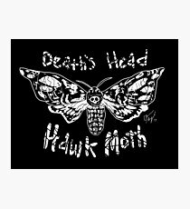 Death's Head Hawk Moth Photographic Print
