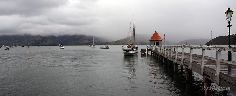 Akaroa Harbour - Banks Peninsular, New Zealand by Ruth Durose