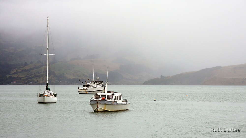 Akaroa Harbour - Banks Peninsular, New Zealand by Ruth Durose