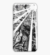 Natural Sunbeam iPhone Case/Skin
