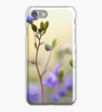 Springtime Colour iPhone Case/Skin