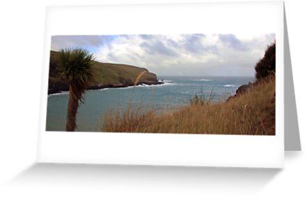 Banks Peninsular - New Zealand by Ruth Durose