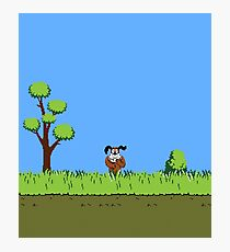 Duck Hunt Dog Photographic Print